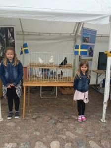 Emma och Emilia visar duvor